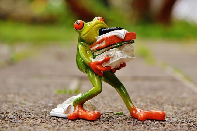 frog-1339916_1920